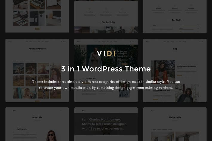 Thumbnail for ViDi - 3 in 1 Creative WordPress Theme
