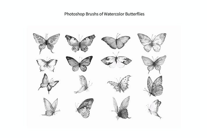 Thumbnail for Photoshop Brush Watercolor Butterflies ABR