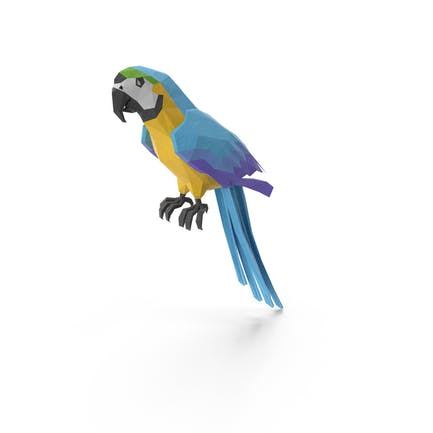 Low Poly Parrot