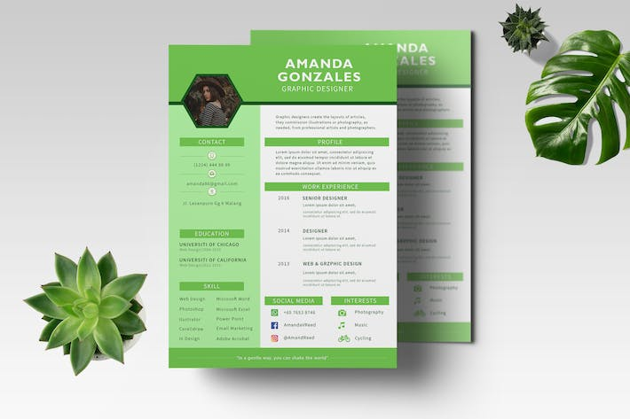 Thumbnail for CV Resume Professional Template Vol. 04