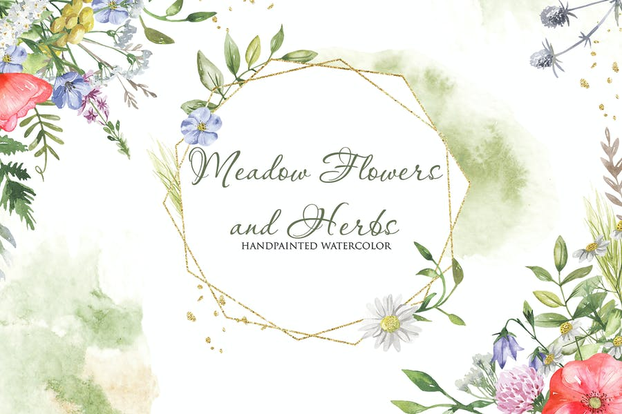 Watercolor Meadow flowers and Herbs