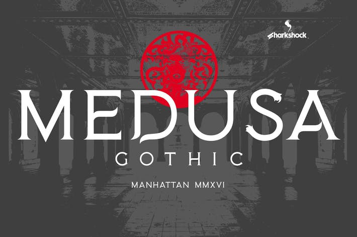 Cover Image For Medusa Gothic