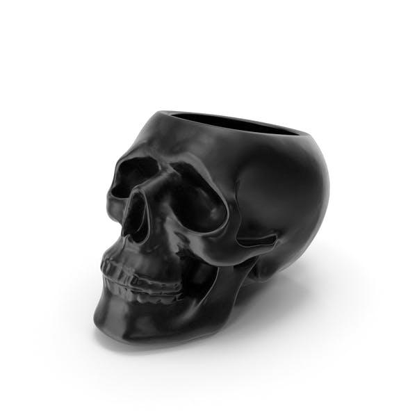 Thumbnail for Skull Vase