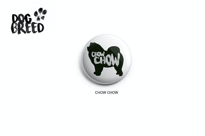 Thumbnail for Chow Chow