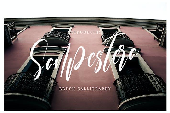 Thumbnail for Sampestera