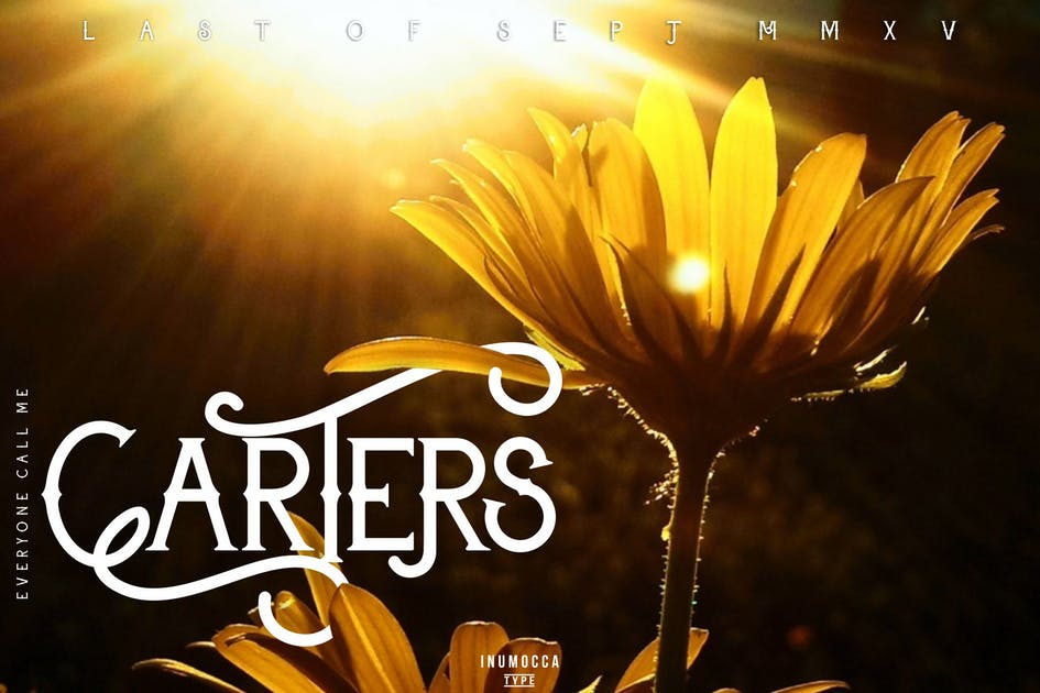 Download Carter Typeface by inumocca