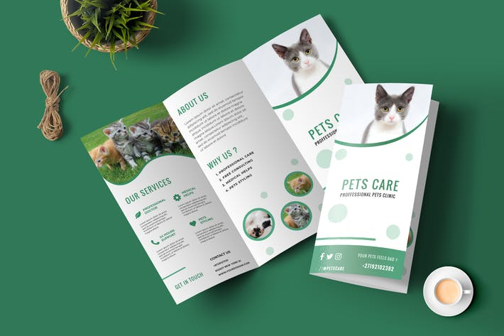 Thumbnail for Pets Care Trifold Brochure