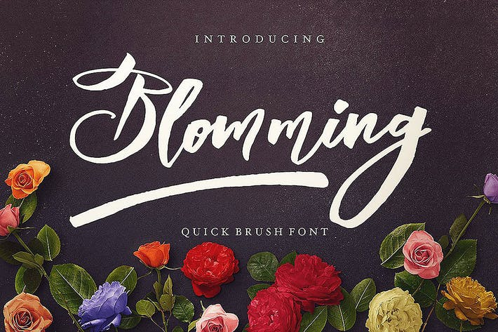 Thumbnail for Blomming - Brush Font