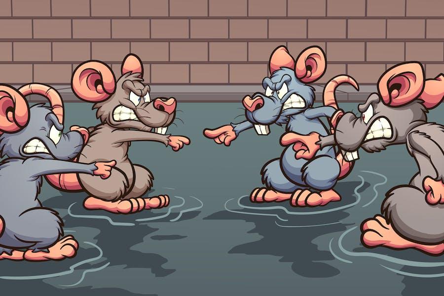 Kanalisation Ratten