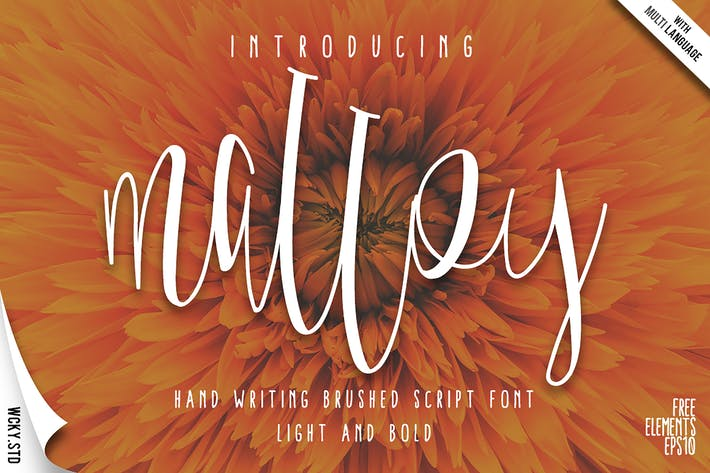 Thumbnail for Malloy Font with Elements