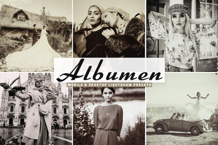 Thumbnail for Albumen Mobile & Desktop Lightroom Presets