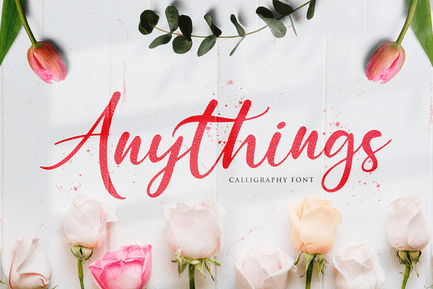 Anythings - Calligraphy Font