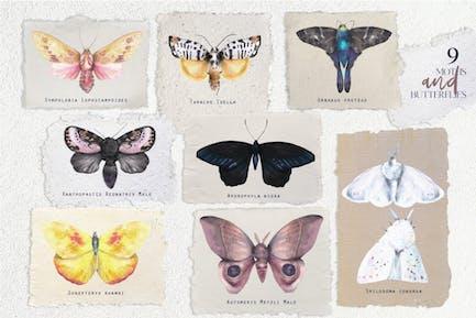 Watercolor vintage moths and butterflies set
