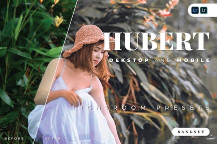 Пресет Hubert для настольных и мобильных устройств