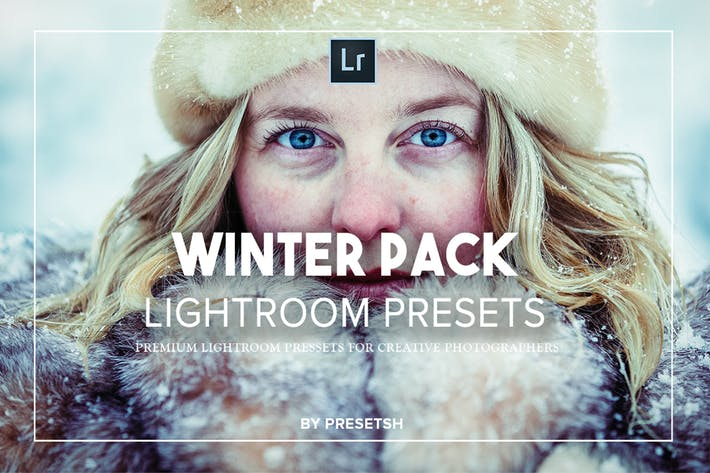 Thumbnail for Winter Lightroom Presets