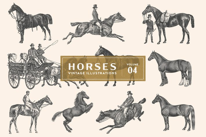 Thumbnail for Vintage Horse Illustrations Vol. 4