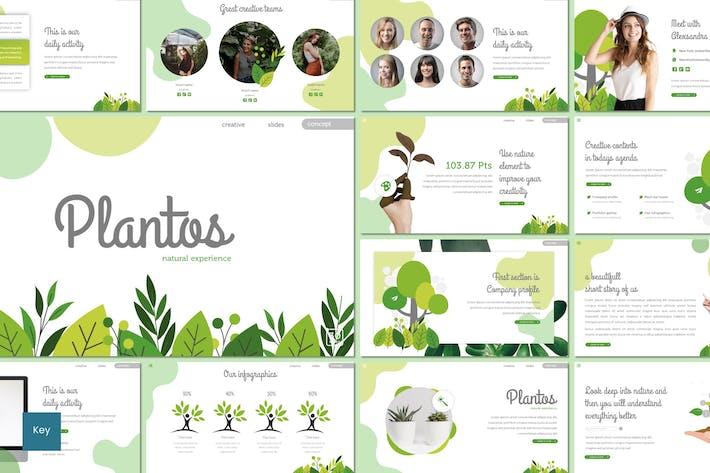 Thumbnail for Plantos - Keynote Template