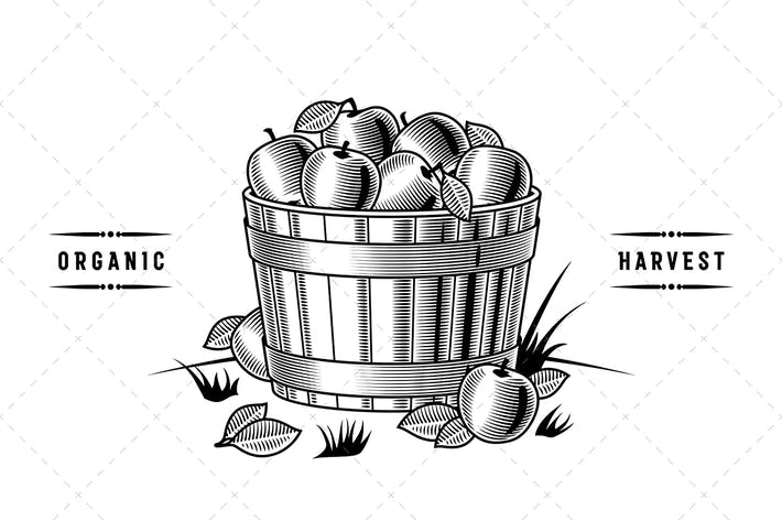Thumbnail for Retro Bushel Of Apples Black And White