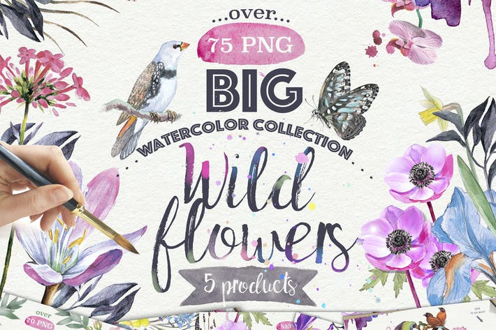 Thumbnail for Wild flowers collection 75 PNG