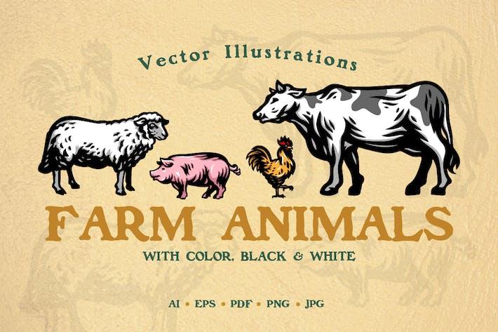 Thumbnail for Farm Animal Illustrations