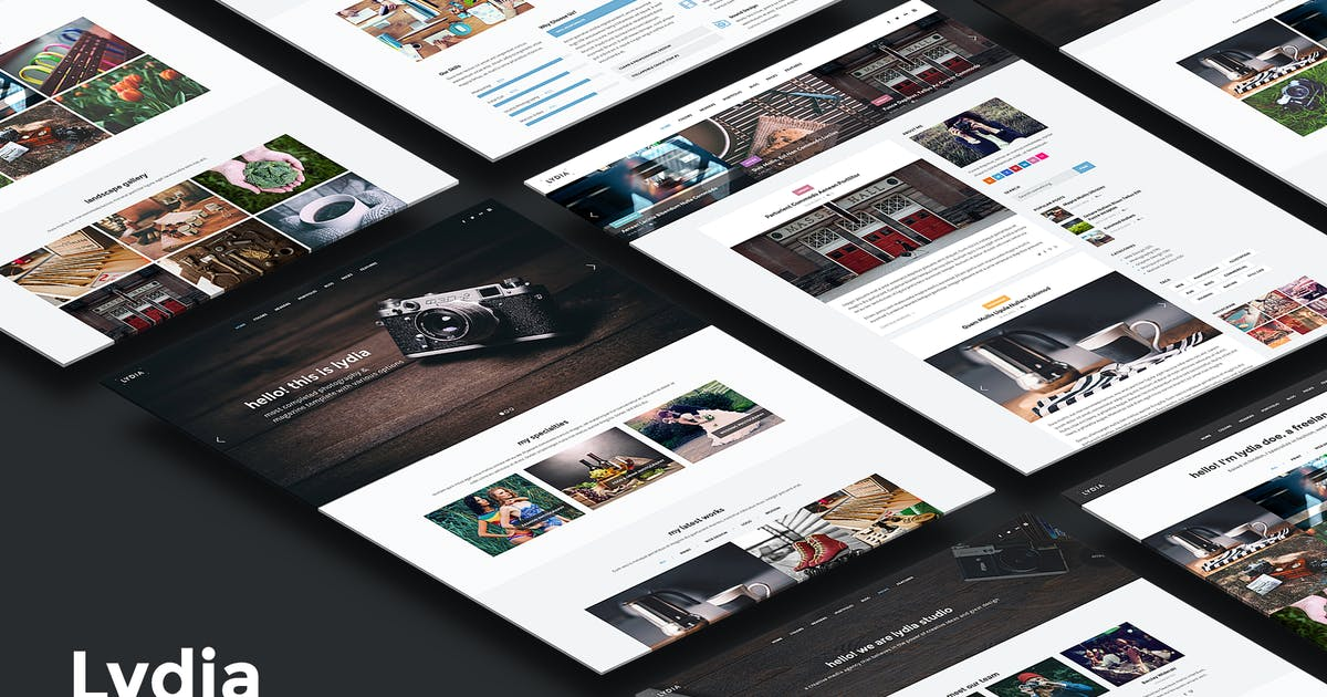 Download Lydia - Photography & Magazine Site Template by elemis