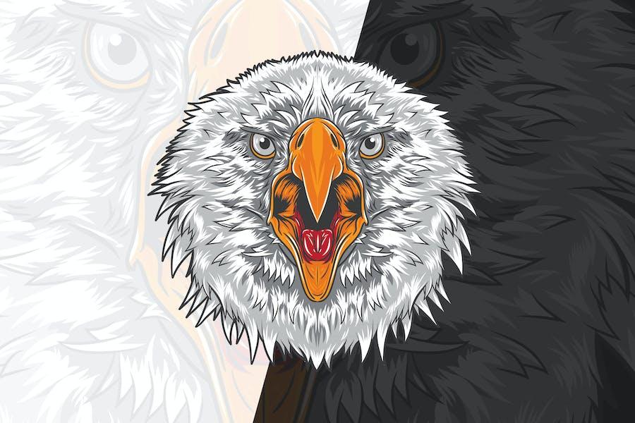 Angry Eagle Head