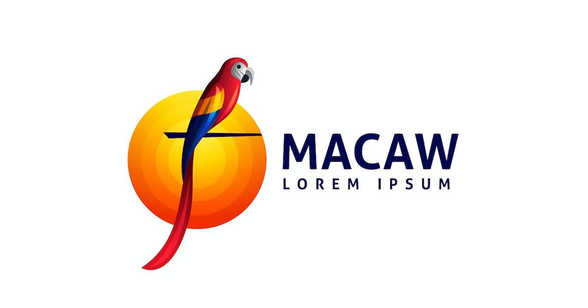 Download Vivid Dynamic Macaw Parrot Logo by Suhandi