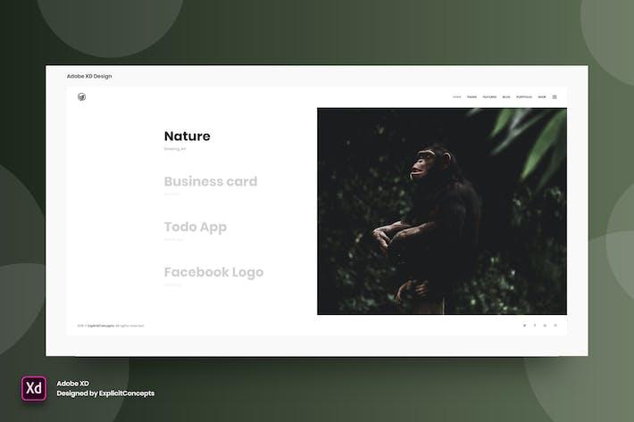 Thumbnail for Interactive Showcase - Adobe XD