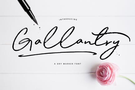 Gallantry Dry Marker Font