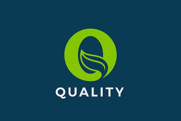 Letter Q Logo Eco Design Leaf