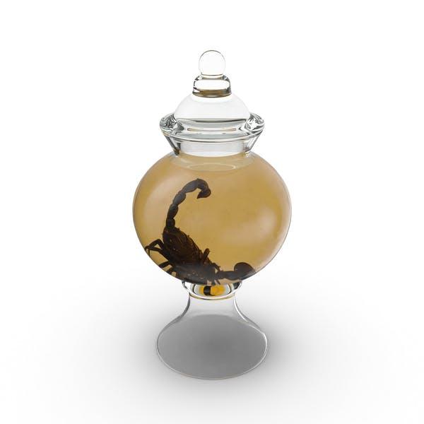 Thumbnail for Scorpion Specimen Jar