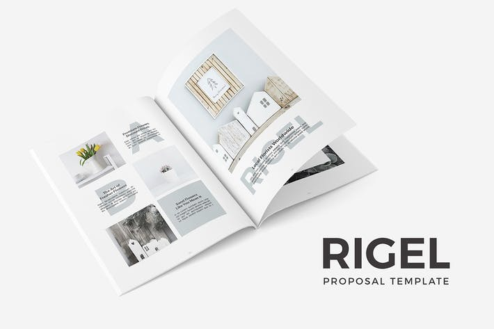 Thumbnail for Rigel Proposal Template