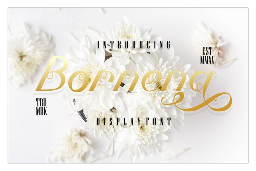Bornena - Elegant Display Font