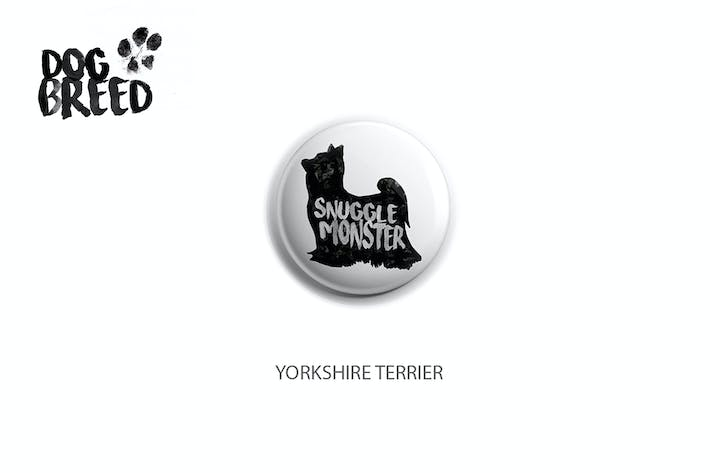 Thumbnail for Yorkshire Terrier