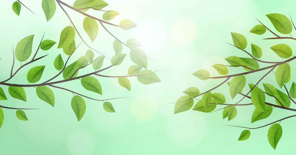 Download Realistic Vector Tree Branch Background by andrewtimothy