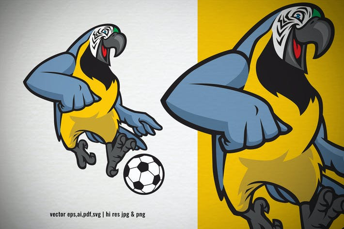 Thumbnail for macaw parrot bird playing soccer