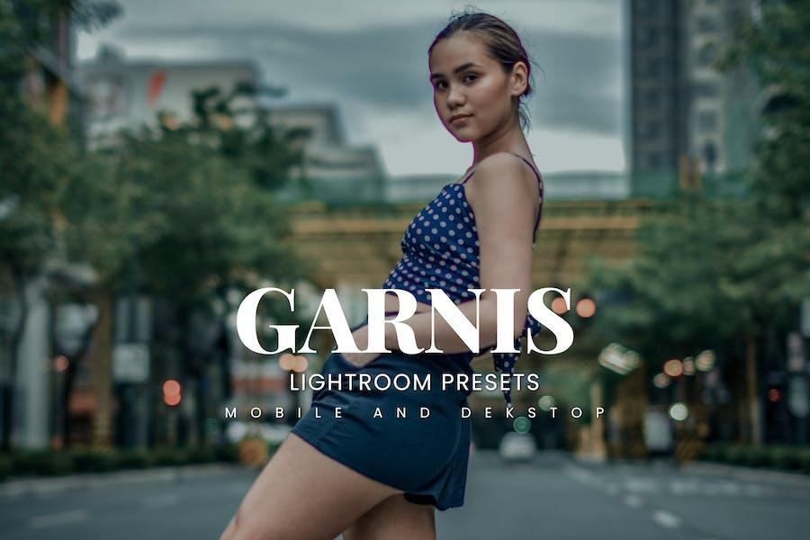 Garnis Lightroom Presets Dekstop and Mobile