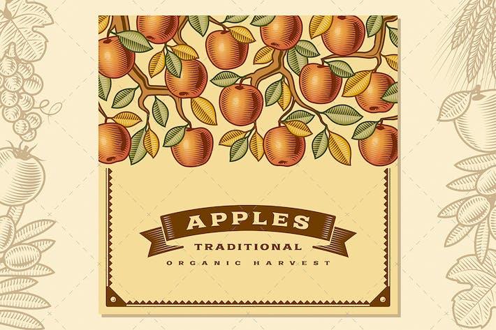 Thumbnail for Retro Apple Harvest Card