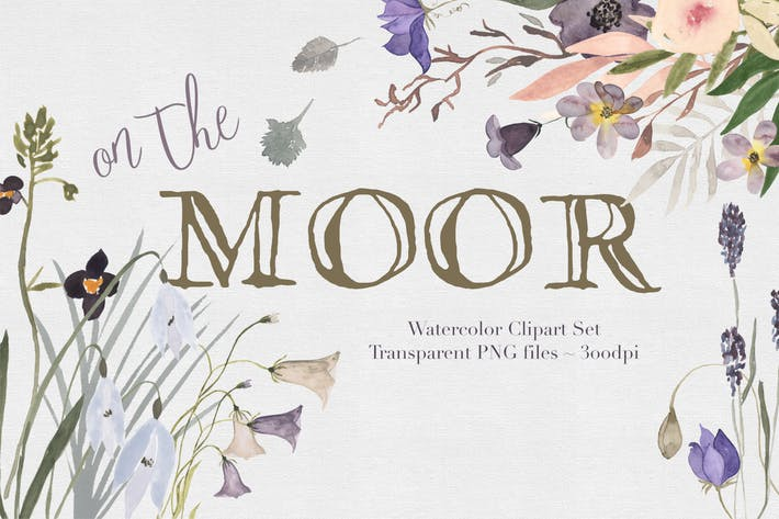 Thumbnail for On the moor