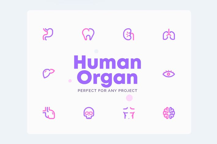 Thumbnail for UICON Human Organ Icons