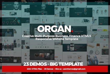 Organ - Mehrzweck-Unternehmen, Finanzen HTML5
