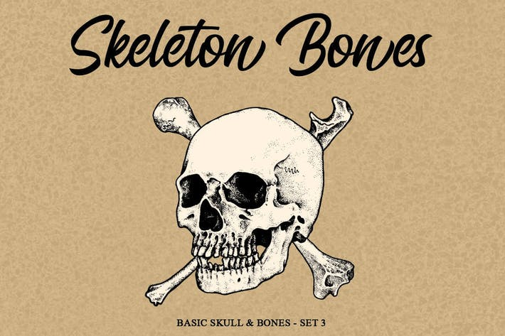 Thumbnail for Skeleton bones set 3