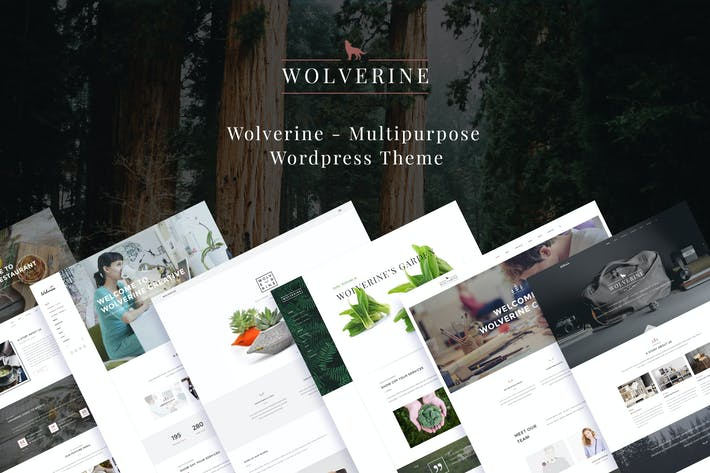 Cover Image For Wolverine - Responsive Multi-Purpose Theme