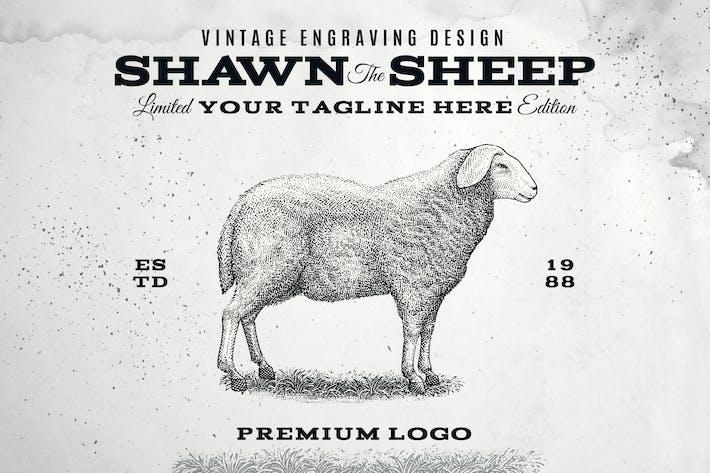Vintage Sheep Logo Template