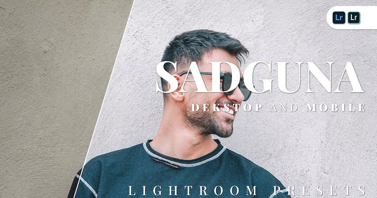 Download Sadguna Desktop and Mobile Lightroom Preset by Bangset