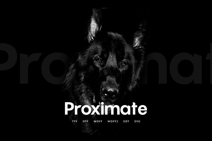 Thumbnail for Proximate - Modern Display Typeface + WebFonts