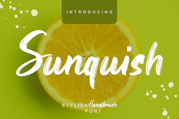 Thumbnail for Sunquish Stylish Handbrush