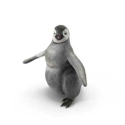 Pingüino Baby Walking Pose