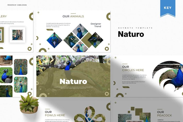 Thumbnail for Naturo | Keynote Template