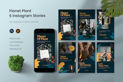 Planet Plant Instagram Story